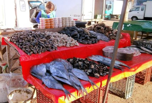 Back in Iquique, Chile and a small fishmonger's stall. Cockles and mussels, alive alive ho.